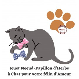 Jouets Chats